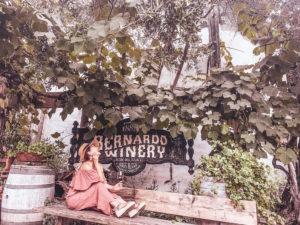 南カリフォルニア・サンディエゴの歴史あるBernardo winery