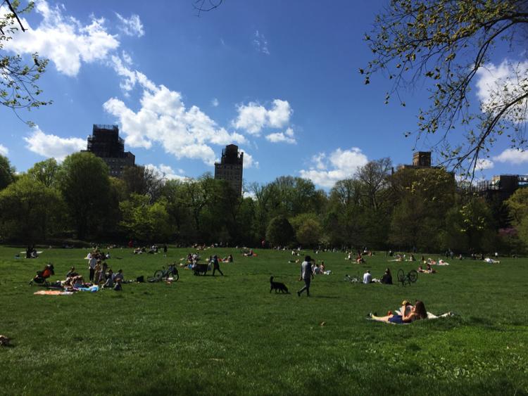 NYブルックリンで大自然を味わえる公園0